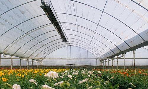 گرماتاب سرامیکی گلخانه ای